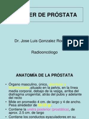 la próstata mide 7 cm 1