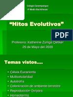 Hitos Evolutivos