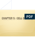 Chapter 5 Cell Division