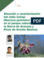 Situacion y Caracterizacion Del Roble Melojo