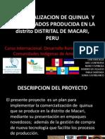Comercializacion de Quinua y Sus Derivados Producida En