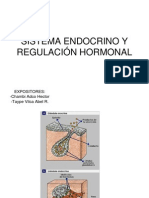 Sistema Endocrino y Regulacion Hormonal