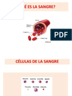 Tipos de Sangre y Rh