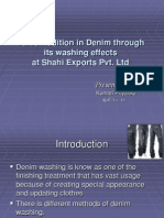 Denim Wash Ppt