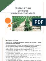 Actividad_Fruticola_-_Citricultura