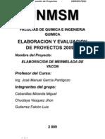 17660649 Proyecto Elaboracion de Mermelada de Yacon