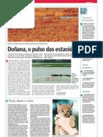 Doñana, o pulso das estacións