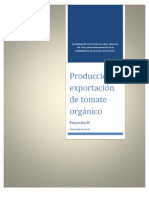 Analisis Financiero Tomate Organico