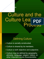 Ch2 Culture Learning Process