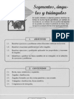 Segmentos, Angulos y Triangulos