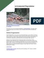 Causes of Environmental Degradation
