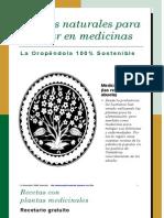 Recetario de plantas para ahorrar unos euros en medicinas