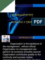 Organisation - Ragupathy