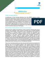 SMALLINONE Public Summary May 2012