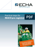 Pre Reg Pract Step En