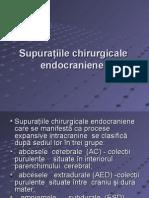 Supuraţiile chirurgicale endocraniene (2)