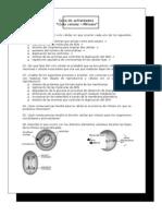2º - Guía de estudio mitosis (VG)