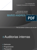 Auditorias internas exposicion