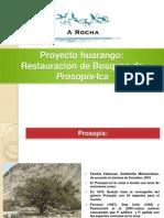 Proyecto huarango-A Rocha Perù