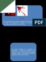 Sangre y Componentes Sanguineo
