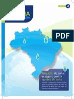 Encarte4 - Irrigação seguro para produtividade  14052012