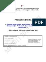 PROIECT MASTER MANAGEMENT-VIZITA.doc
