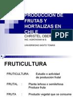 Frutas Hortalizas Christel