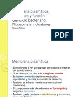 clase3-membrana plasmatica