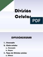 10mo Bach División Celular