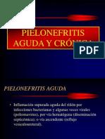Patologia de La Pielonefritis Aguda y Cronica