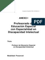 Profesorado Educacion Especial. Discapacidad Intelectual