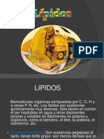 Lipidos Clase Usmp - Semanana 15