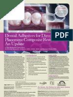 1108cei Dentsply Adhesives
