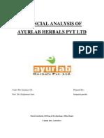 Ayyurlab Financial Analysis