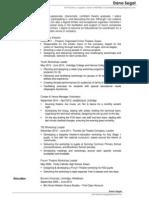 Workshop Facilitator/Theatre-In-Education CV