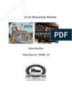 A Project on Derivatives _(Finance)