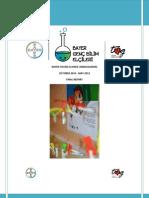 Bayer Genç Bilim Elçileri - Final Raporu