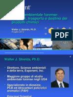 Diossina e Salute, Le Esperienze Internazionali_Centro Studi Ilva_4lug2012