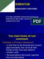 4 Cementum and Alveolar Bone