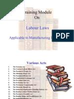 51101131-labour-laws