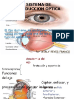 Sistema de Conduccion Optica