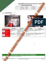 baroigserviciosprocedimientoloto3-100802092424-phpapp02