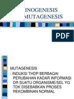Uji Karsinogenik & Mutagenik
