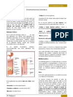 clase14-helicobacterpylori-110925125409-phpapp02