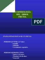 Fisiología-frutales4
