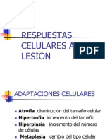 lesiones celulares