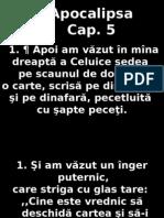 Apoca_05