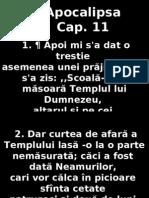 Apoca 11