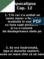 Apoca_12