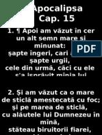 Apoca_15